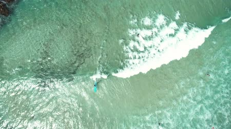 surfista : Top view of waves break on tropical white sand beach and surfer with surfing board. Aerial drone view 4k shot of sea waves on the beautiful beach. Stock Footage