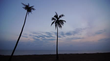 horizonte sobre a água : time lapse of sunrise over tropical beach scene