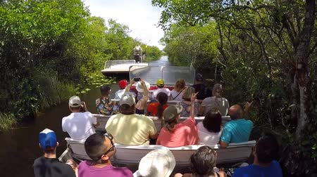 vezetett : EVERGLADES, FLORIDA, USA - APRIL 30, 2016: A guided tour with tourists on an air boat is slowly passing an empty air boat in the middle of the swamp of the Everglades Stock mozgókép
