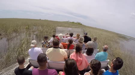 vezetett : EVERGLADES, FLORIDA, USA - APRIL 30, 2016: A guided tour with tourists on an air boat is from high speed stopping in the middle of the swamp of the Everglades