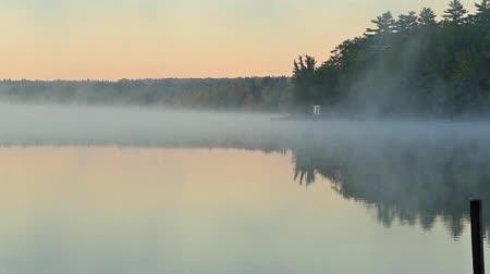 nevoeiro : A video of the morning mist flowing over Toddy Pond in East Orland Maine with trees and sky reflected on the calm surface water. Vídeos