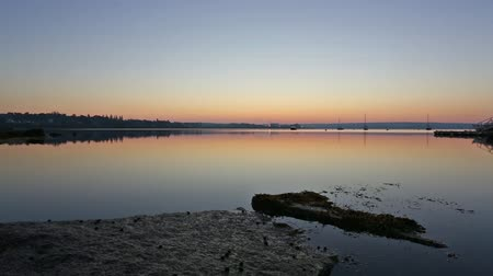 chaluha : Dawn at Searsport Maine with boats in the distance and granite and seaweed in the foreground.