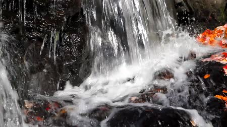 belfast : Video of a small flow of churning water falling onto rocks with colorful fall leaves. Stock Footage