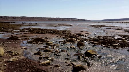 chaluha : Wide view of water running into Penobscot Bay at Stockton Springs Maine in the early spring.