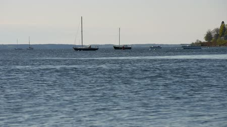 ancorado : Several boats at their moorings in the early morning light at Belfast, Maine.