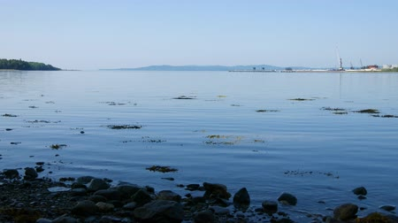 chaluha : Video of Penobscot Bay from Searsport Maine in the summertime with the tide out showing a rocky shoreline in the foreground. Dostupné videozáznamy