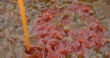 światłowód : Close video of adding ketchup to cooked bacon and onion flavored baked beans. Wideo