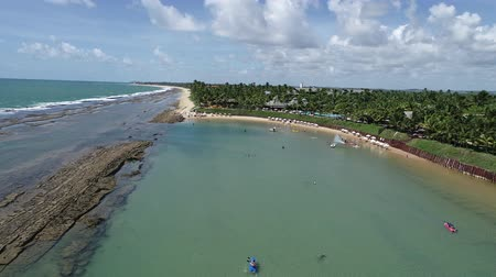 Aerial view of Muro Alto Beach, Porto de Galinhas, Brazil: Vacation in the paradisiac beach with fantastics natural pools. Great beach view. Travel destination. Vacation travel. Perfect vacation!