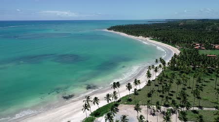 Vacation on deserted beach in Brazil. Sao Miguel dos Milagres, Alagoas, Brazil. Fantastic landscape. Great beach scene. Paradise beach. Brazillian Caribbean.