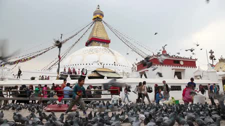 BODNATH, KATHMANDU, NEPAL - APRIL 6, 2014: People feeding birds near Bodnath stupa from the roof top restaurant. Most popular center of Buddhism pilgrimage in Nepal Wideo