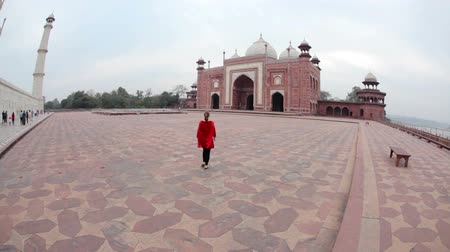 Tourist in Taj Mahal Wideo