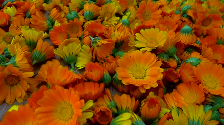 dried marigold flowers to zoom in