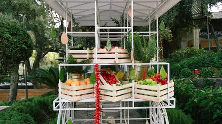 zahradník : Greengrocer stand. Tomatoes, beans, oranges, corn, pomegranate, eggplant, green pepper, paprika, daisy.