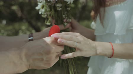 fiancee : Closeup male hands giving bouquet of fresh chamomiles to his girlfriend and holding red velvet box containing engagement ring while making marriage proposal to beloved woman outdoors. Stock Footage