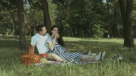 pregnancy : Attractive brunette pregnant woman drinking orange juice and talking with her affectionate husband while sitting on picnic blanket in park. Happy pregnant family relaxing in nature on summer picnic.