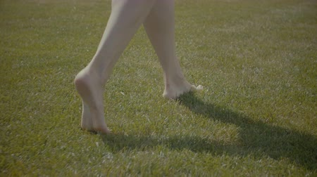 благодать : Light step barefoot on the soft summer grass. Closeup of slim perfect legs stepping on tiptoes on the soft green grass on sunny summer day. Rear view. Womens legs walking barefoot green grass field. Стоковые видеозаписи