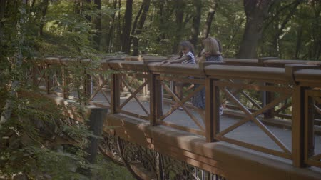 wooden bridge : Relaxed caucasian mother and her adorable elementary age mixed race daughters enjoying nature and looking at view while standing on wooden bridge in travel location during summer vacation.