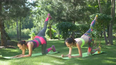 planking : Fitness sporty women doing abs exercise to tone stomach muscles on yoga mats in nature. Healthy lifestyle female friends practicing raised leg plank yoga pilates exercises, training abs core muscles.