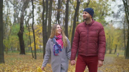 conversando : Positive attractive couple in love enjoying moments together and talking while taking a walk in autumn nature. Joyful romantic couple relaxing outdoors while walking along footpath in autumn park. Vídeos