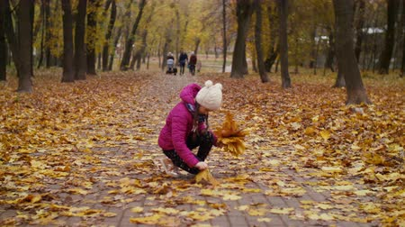 intéz : Cheerful girl arranging bouquet of brightly colored yellow maple leaves while enjoying leisure in autumn park during a walk. Positive joyful child collecting bouquet of fallen foliage in indian summer