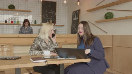 realtor : Professional realtor choosing online on laptop rental place for female small business owner talking on smartphone at meeting in cafeteria. Successful woman entrepreneur going to open new grocery shop. Stock Footage