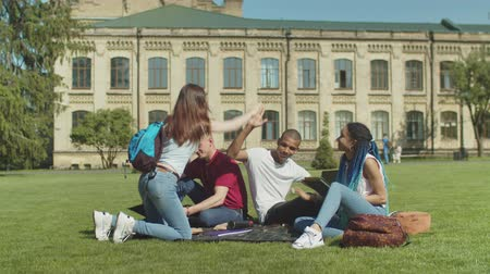 multinational : Group of positive diverse students greeting female friend giving five while sitting on green grass and preparing for university studies. Young multinational classmates studying outdoor on campus lawn.