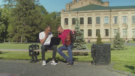 remotely : Joyful friend making fun of sleepy young man waking up him on bench in university park. Overworked african american student sleeping at laptop outdoors before exams and after sleepless night at campus