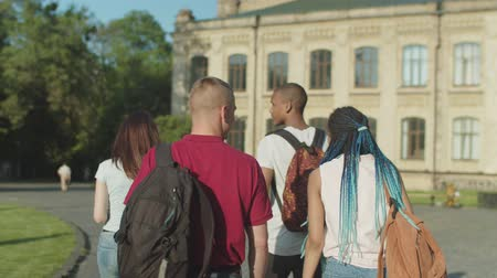 многонациональная : Back view of multi ethnic college friends communicating while walking through university park before lessons. Positive diverse students with backpacks going along university campus and chatting. Стоковые видеозаписи