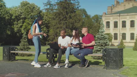 многонациональная : Group of multi ethnic friends preparing for university ezams outdoors while african american female coming up to hurry them. Diverse mates communicating before classes sitting on bench in park. Стоковые видеозаписи