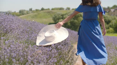 sunhat : Rear view of carefree trendy woman running through floral glade with white sun hat sliding over fragrant lavender blossoms. Playful young female enjoying unity with blooming nature in countryside.