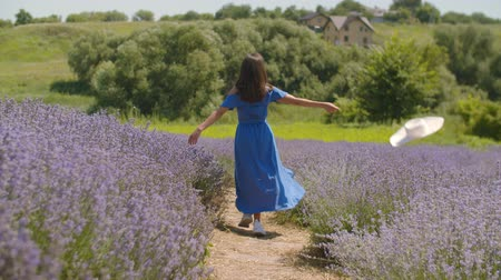 sunhat : Excited carefree woman in blue dress throwing white sun hat away while running joyfully through purple lavender field. Rear view of positive female enjoying summer nature and freedom in countryside. Stock Footage