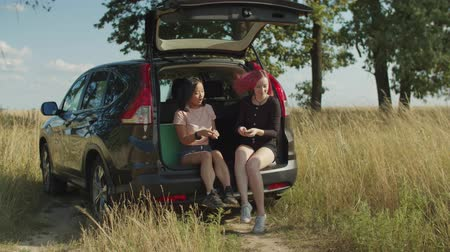hipsters : Positive carefree multiracial tourist women sitting in car trunk, playing cards and enjoying outdoor leisure during summer vacations. Excited females travelling by car and relaxing in countryside. Stock Footage