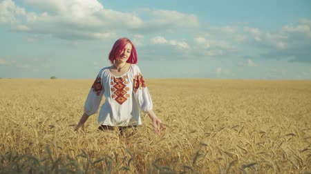 gwóżdź : Elegant stylish pink-haired young woman in ukrainian national clothes walking slowly through golden wheat field in rays of setting sun, expressing joy, happiness and unity with summer nature.