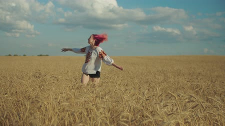 saçlı : Lovely cheerful pink-haired young woman in ukrainian embroidered clothes with arms outstretched walking in golden ripe wheat field during sunset, expressing joy, happiness and positivity. Stok Video