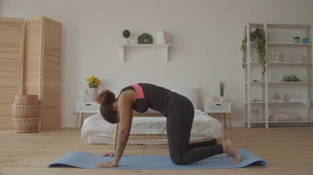 napětí : Graceful african american woman in sportswear practicing backbend in cow yoga posture, bitilasana, exercise for flexible spine and shoulders, paired with cat pose on exhale on exercise mat at home.