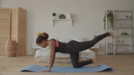 Concentrated fitness african american woman in sportswear working out doing plank with one leg up on exercise mat in domestic room. Sporty fit black female practicing leg lift plank pose indoors.
