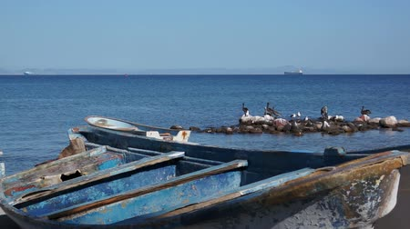 apodrecendo : Old Wooden Boats on the Ocean Shoreline