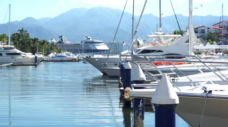 levee : Boats Moored at the Dock Dolly Stock Footage