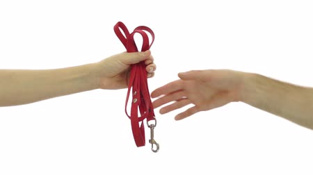 sıkıcı iş : Handing Over the Dog Leash