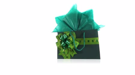 bolsa : Green Gift Bag Dolly