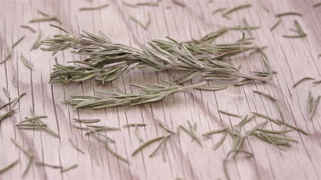 kokulu : Rosemary Herb Sprigs and Leaves Dolly Stok Video