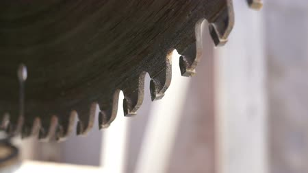 miter saw : Miter Saw Radial Blade Teeth Macro Side View Stock Footage