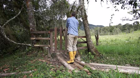 фехтование : Man in yellow rubber boots opens and walks through a rustic style wooden gate in a countryside fence and turns around and closes the latch on it. Стоковые видеозаписи