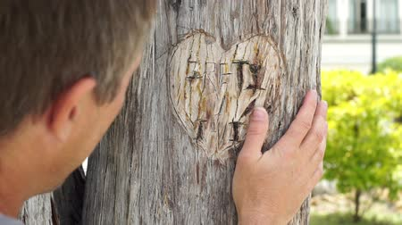гравюра : Handheld shot of a lovers heart carved into the bark of a tree with a park background with a male coming into the scene to remember, reminisce or look at the symbol of love. Стоковые видеозаписи