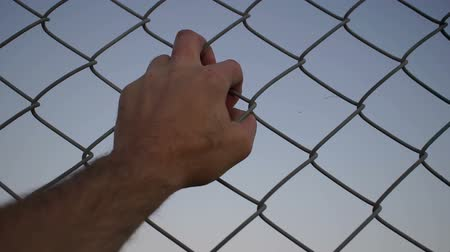 фехтование : Close up evening or dusk shot of a single hand of an anonymous male person grabbing a chain link metal wire fence with their hand.