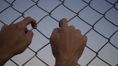 kamp : Close up evening or dusk shot of the hands of an anonymous male person grabbing a chain link metal wire fence and shaking it.