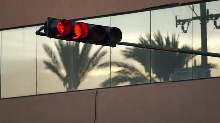 Static evening shot of a traffic light turning from red to green with tropical palm trees reflected in the glass windows of a nearby building. Stock Footage