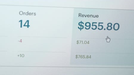 Close up shot of a sales and revenue report on a computer monitor from an online merchant store or web site.