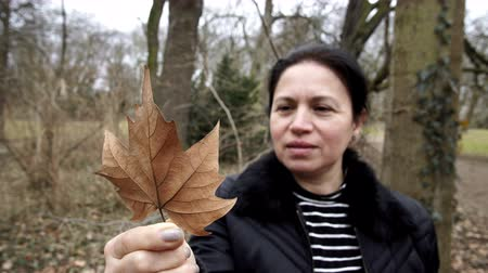 Close up shot of a middle age woman outside in a park looking at a fallen maple leaf and admiring the beauty of nature. Stock Footage