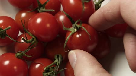A close up shot of an anonymous person grabbing an organic cherry tomato as a healthy snack food  from a bowl.